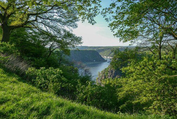 De Rijn nabij de Loreley