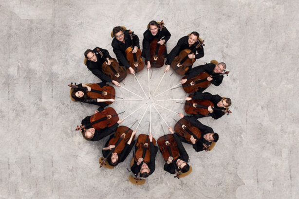 De twaalf cellisten van de Berliner Philharmoniker (foto: Uwe Arens)